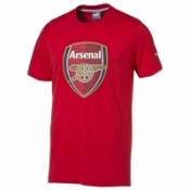Puma AFC Fan Tee (Pack of 12)
